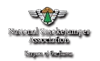 smokejumper association logo
