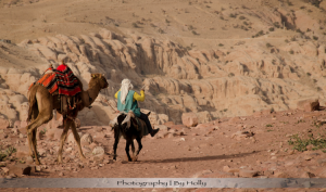 Photography by Holly Travel Camel
