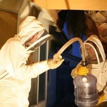 Bee Men with Bee-Vacuum